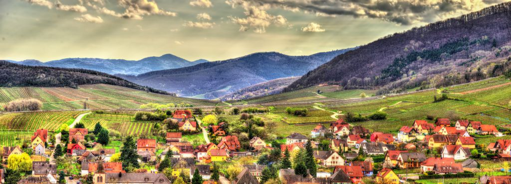 Famous wine route in the Vosges mountains - Alsace, France